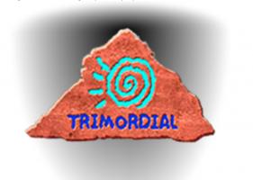Trimordial Studio Las Vegas signed the Democracy Pledge